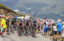 Peloton in de Bergen van de Pyreneeën Stock Fotografie