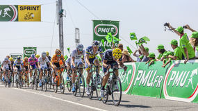 The Peloton Delayed. Saint Aoustrille, France-July 12,2013: The delayed peloton with Castroviejo on the front at the intermediate sprint line during the stage 13 Royalty Free Stock Photo
