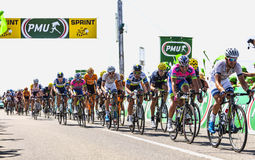 The Peloton Delayed Royalty Free Stock Photos