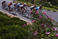 peloton des cavaliers de vélo dans une course photo libre de droits