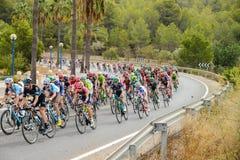 Peloton di Vuelta della La fotografie stock libere da diritti