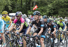 The Peloton Royalty Free Stock Images
