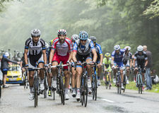The Peloton in a Misty Day Stock Photo