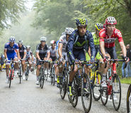 The Peloton in a Misty Day Stock Images
