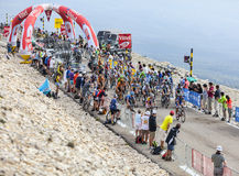 The Peloton on Mont Ventoux Stock Photos