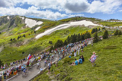 The Peloton in Mountains Stock Image