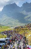 The Peloton in Mountains Royalty Free Stock Image