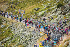The Peloton in Mountains - Tour de France 2016 Royalty Free Stock Images