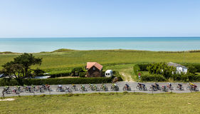 The Peloton in Normandy - Tour de France 2015 Stock Image