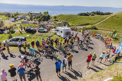 Peloton op Col. du Grand Colombier - Ronde van Frankrijk 2016 Stock Fotografie