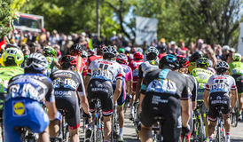 Peloton op Mont Ventoux - Ronde van Frankrijk 2016 Stock Foto