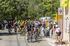 Peloton op Mont Ventoux - Ronde van Frankrijk 2016 Stock Fotografie