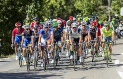 Peloton op Mont Ventoux - Ronde van Frankrijk 2016 Stock Afbeelding