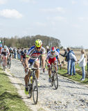 Peloton- Parijs Roubaix 2015 Stock Fotografie