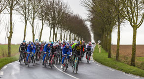 The Peloton - Paris-Nice 2017 stock image