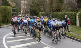 The Peloton - Paris-Nice 2019 royalty free stock image