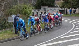 The Peloton - Paris-Nice 2019 royalty free stock photos