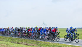 The Peloton - Paris-Nice 2016 Stock Image