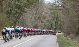 The Peloton - Paris-Nice 2019 stock images