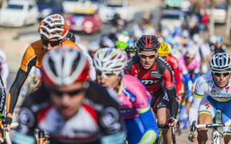 The Peloton- Paris Nice 2013 in Nemours Stock Photos