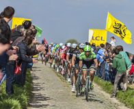The Peloton- Paris Roubaix 2014 Stock Photo
