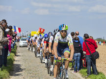 The Peloton- Paris Roubaix 2014 Royalty Free Stock Images