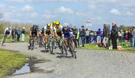 The Peloton - Paris Roubaix 2016. Hornaing ,France - April 10,2016: The German cyclist Tony Martin of Etixx-Quick Step Team riding in the peloton on a paved road Stock Image