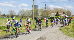 The Peloton - Paris Roubaix 2016 stock photo