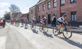 The Peloton - Paris Roubaix 2016 royalty free stock photo