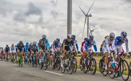 The Peloton - Paris-Tours 2017 royalty free stock photos