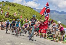 The Peloton in Pyrenees Mountains Royalty Free Stock Image