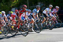 The Peloton racing Royalty Free Stock Photo