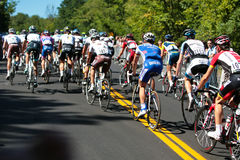 The Peloton racing Royalty Free Stock Photography