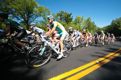 The Peloton racing royalty free stock photo