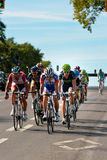 The Peloton racing Royalty Free Stock Image