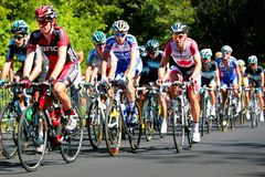 The Peloton racing with BMC leading Stock Photography