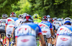 The Peloton - Tour de France 2016. Bouille-Menard,France - July 4, 2016: Rear image of the peloton riding during the stage 3 of Tour de France in Bouille-Menard Royalty Free Stock Photography