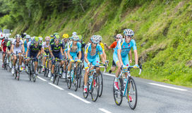 The Peloton - Tour de France 2014 Stock Images