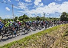 The Peloton - Tour de France 2016 Stock Photo