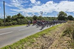 The Peloton - Tour de France 2016 Stock Image
