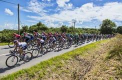 The Peloton - Tour de France 2016 Royalty Free Stock Photography