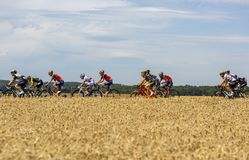 The Peloton - Tour de France 2017 royalty free stock image