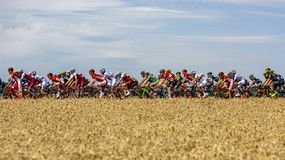 The Peloton - Tour de France 2017 stock image