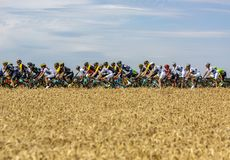 The Peloton - Tour de France 2017 royalty free stock photo