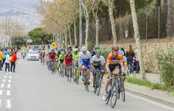The Peloton - Volta Ciclista a Catalunya 2016 Royalty Free Stock Photos