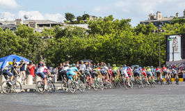 Pelotonen i Paris - Tour de France 2016 Arkivfoto