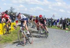Pelotonen - Paris Roubaix 2016 Royaltyfria Bilder