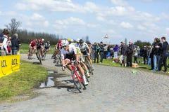 Pelotonen - Paris Roubaix 2016 Arkivbild