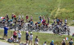 Pelotonen - Tour de France 2018 Arkivfoton
