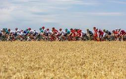 Pelotonen - Tour de France 2017 arkivbilder